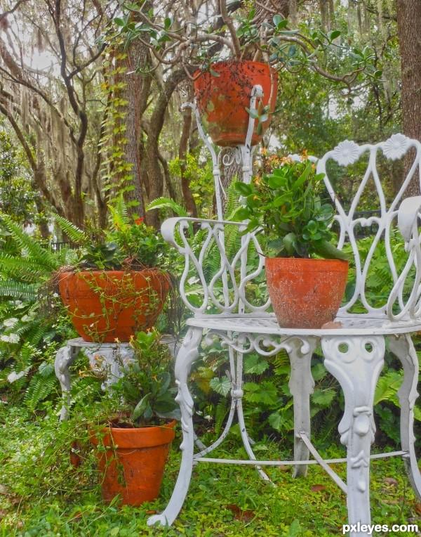 Weekend garden