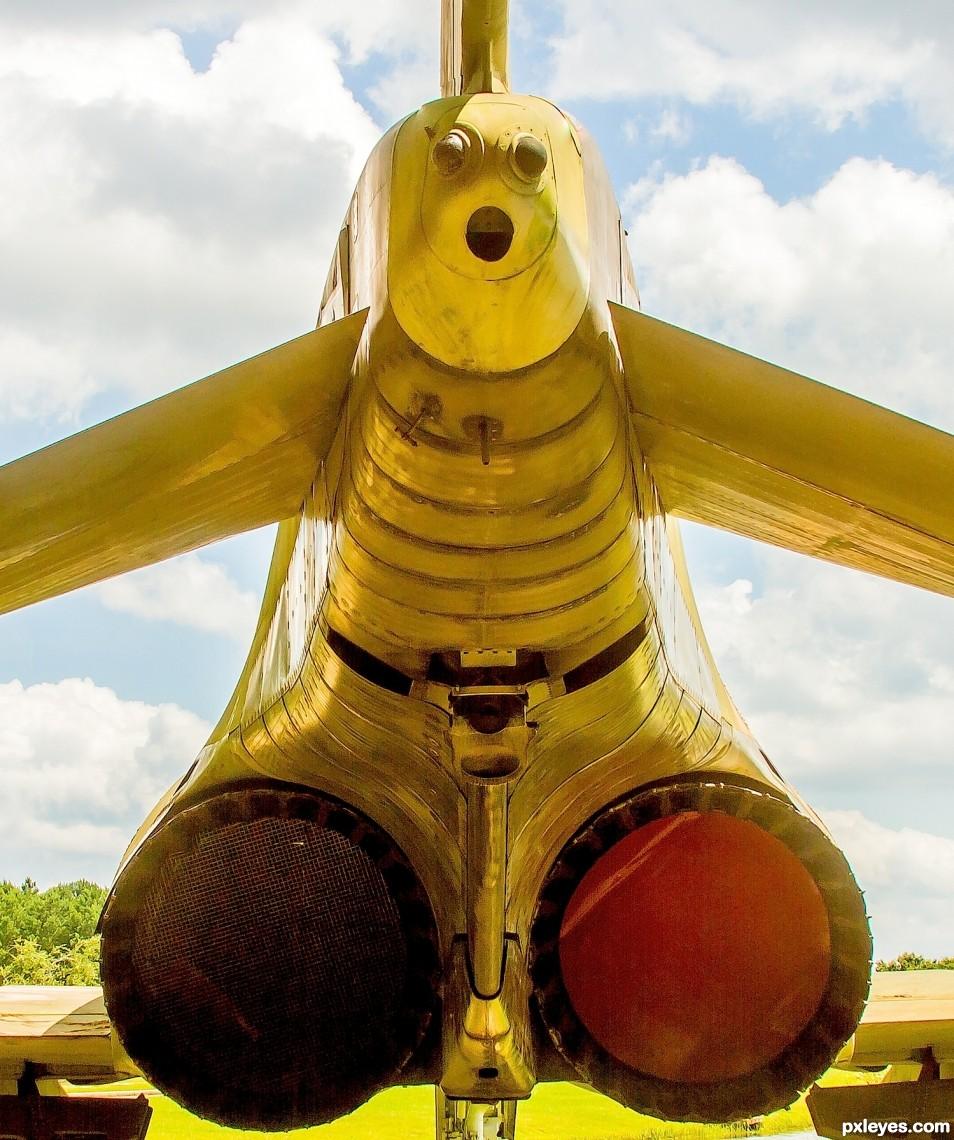 Jet plane tail view