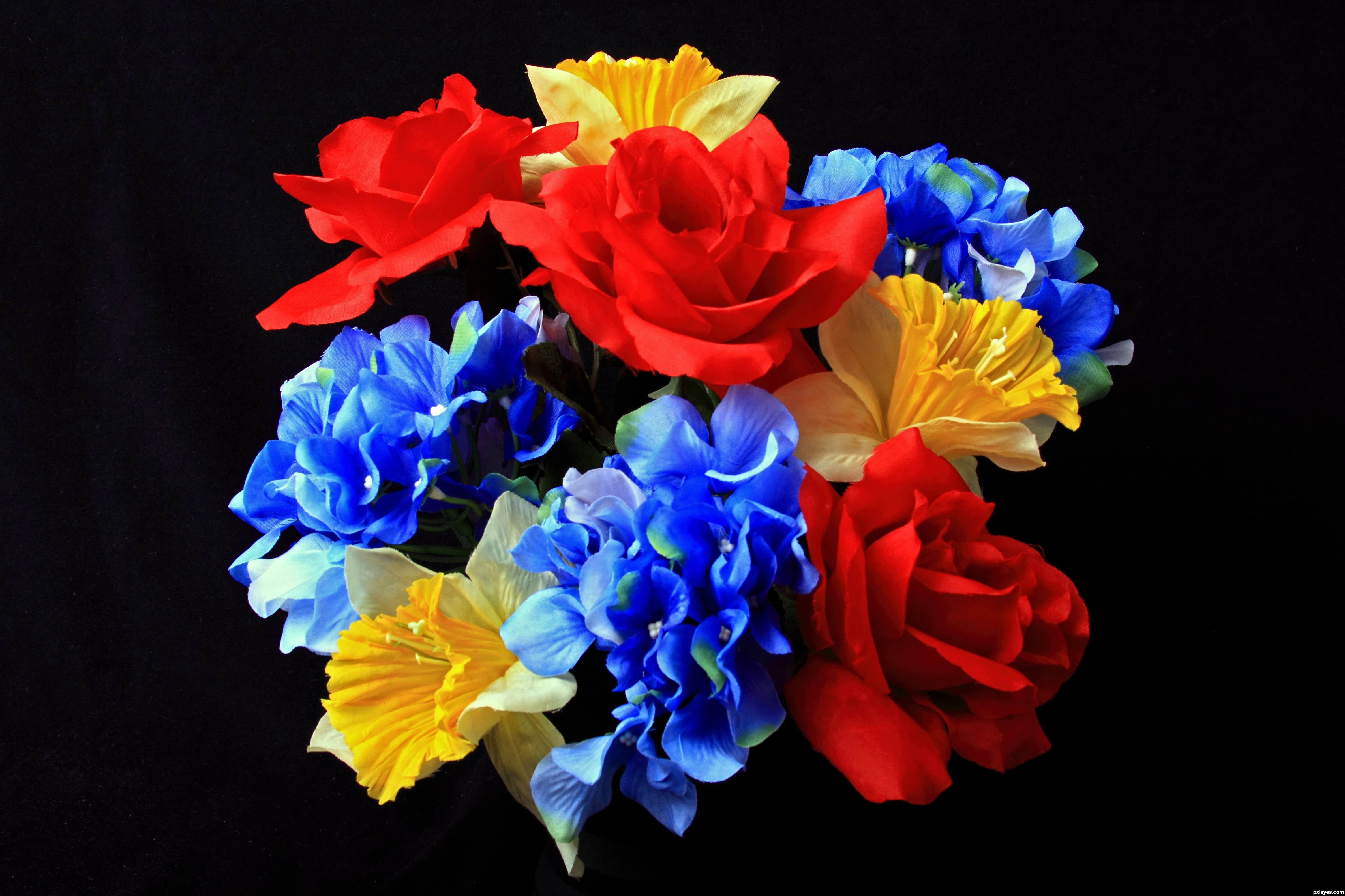 Flowers picture, by UncleJimmy for: primary colors photography ...