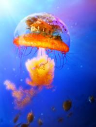 OceanCottage