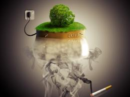Plant the trees with smokes Picture