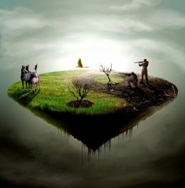 Nature Playing Yin and Yang