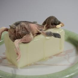 ButterWarmer