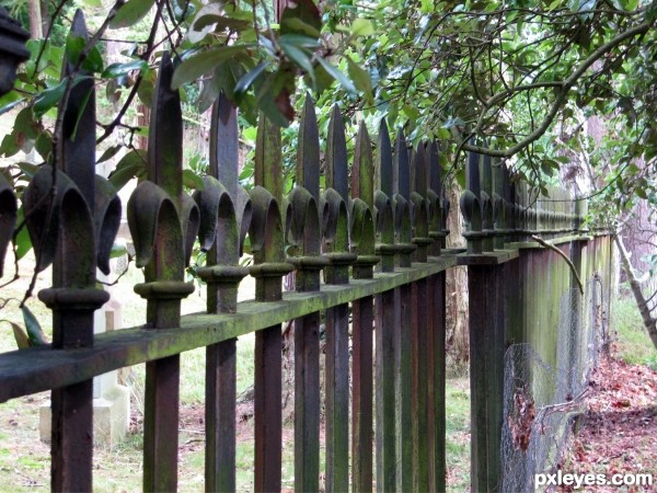Mould on Railings