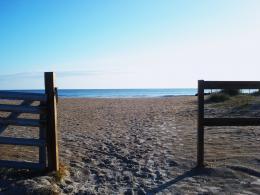beachbaracade