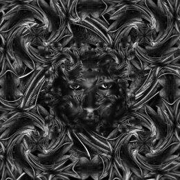 Spirale Picture