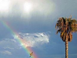 Flying inside the rainbow