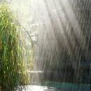 rainy weather photography contest