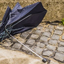 Thatpoorumbrella