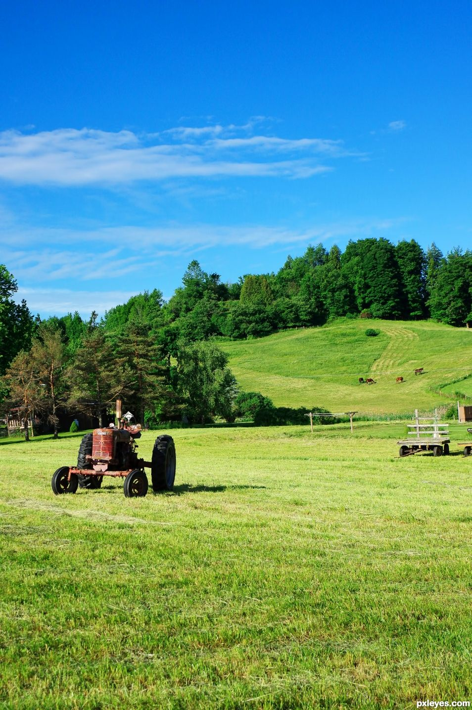 farming and ranching essay contests