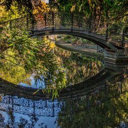 Bridgeinpark