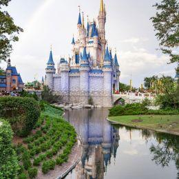Magic Kingdom Picture