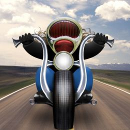 Open Road Biker Picture