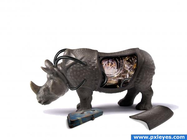 rhino repair