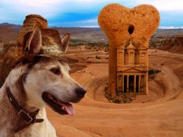 Indiana Dog and the temple of bones