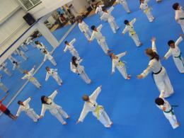 Taekwondolines