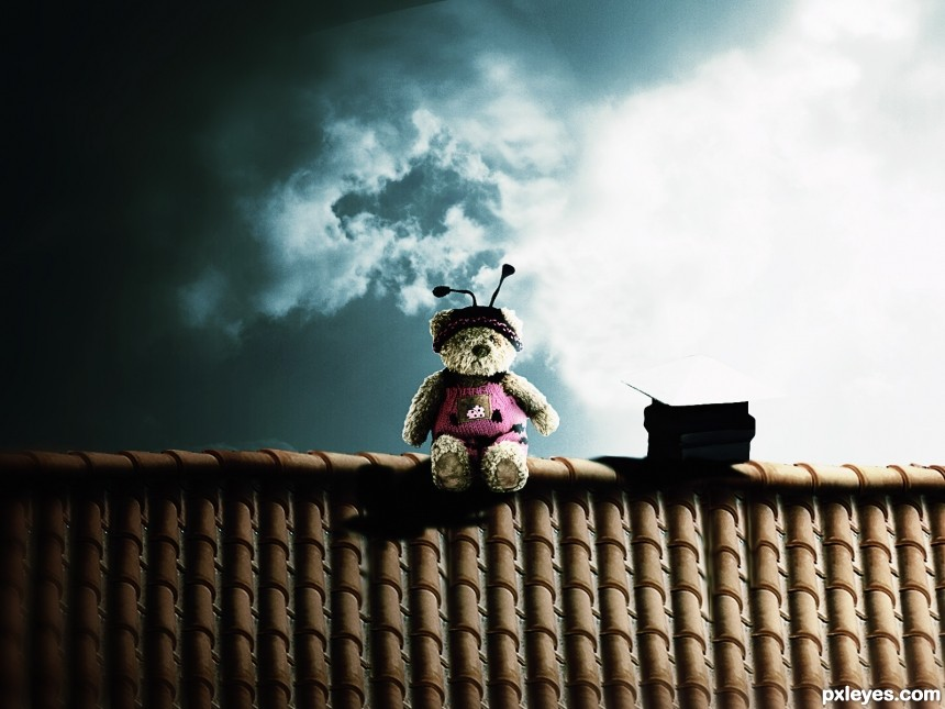poo on the roof photoshop picture)