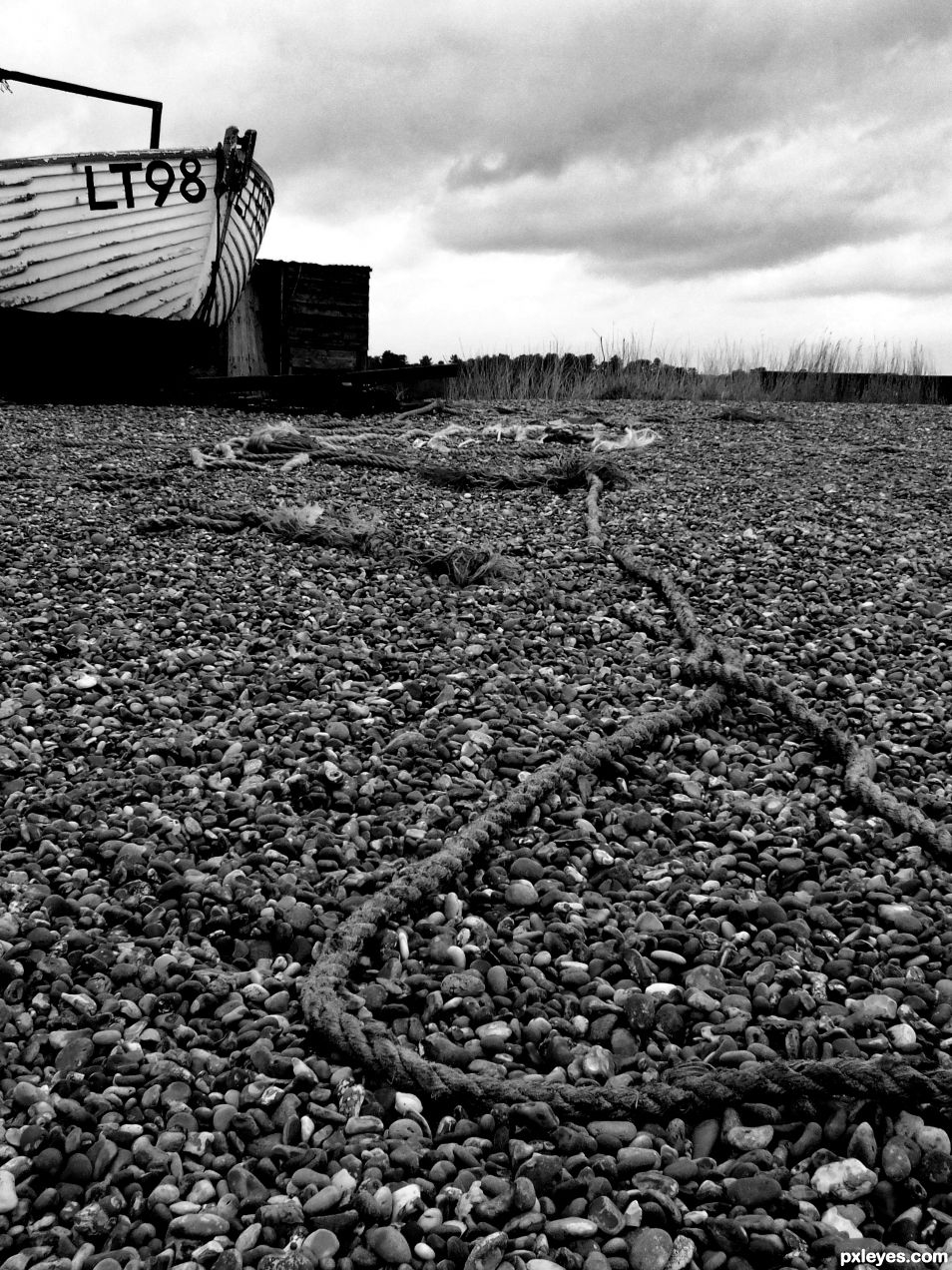 Discarded Rope