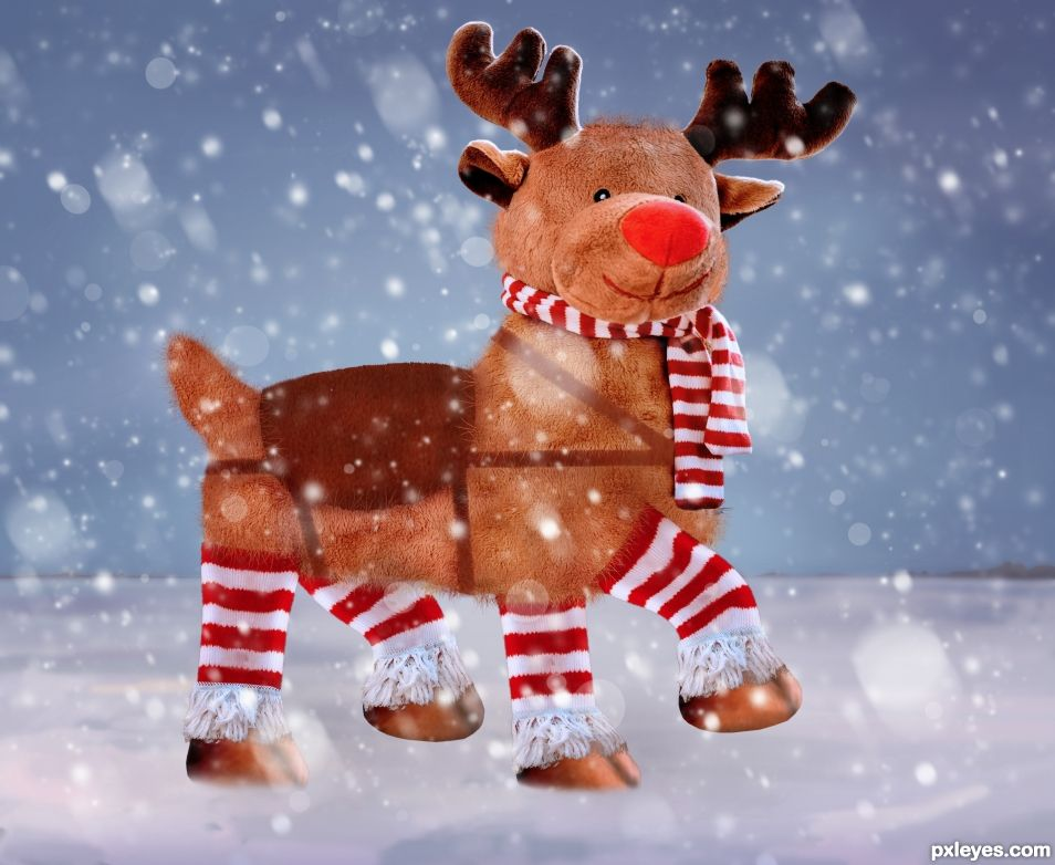 Rudolf in the Snow