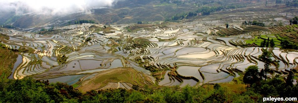 Yuanyang Rice terraces - Yunnan Province
