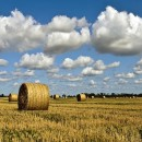 rural panorama photography contest
