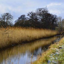 Ruralstream