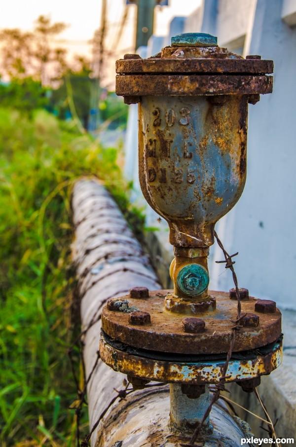 Rusty gate bulb