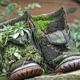 UsedShoes
