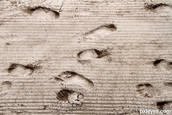 Sandy footsteps