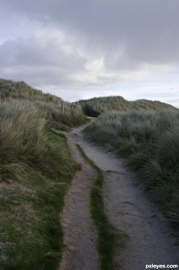 sand pathway