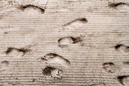 Sandyfootsteps