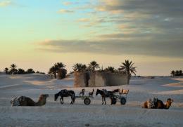 Desertsand