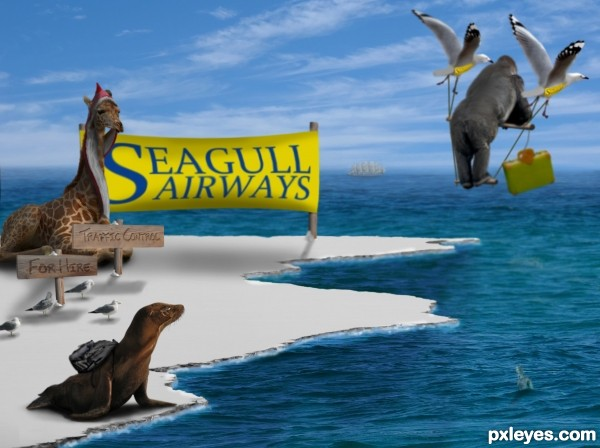 SeaGull Airways photoshop picture