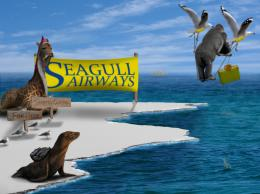 SeaGullAirways