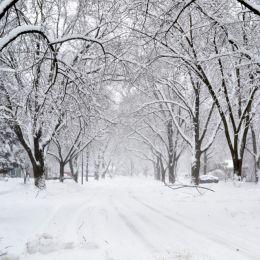 SnowyStreet