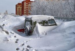 Snowdrops :-)