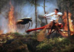 Dragonfy Rider