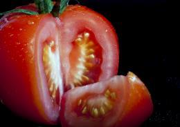 TomatoSeeds