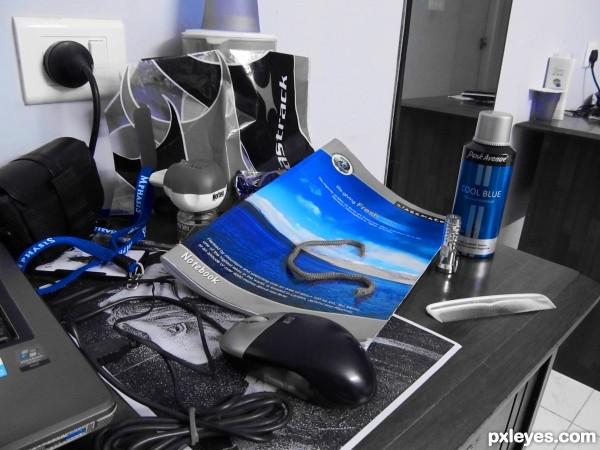 Cool Blue!!!