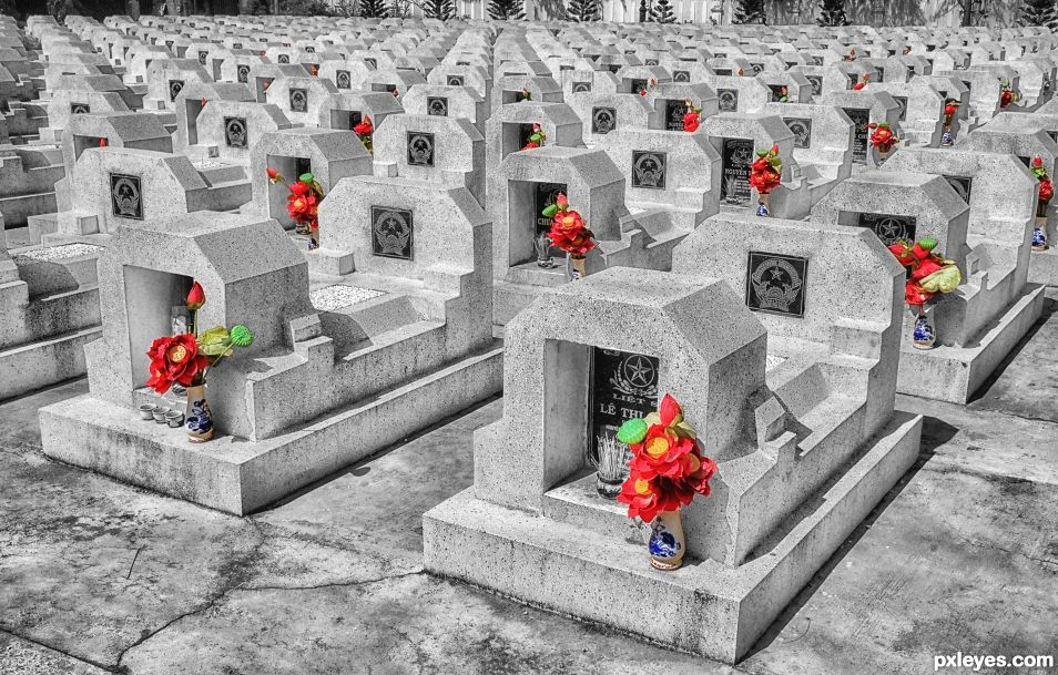Remembering their fallen