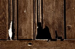 Crack on the door