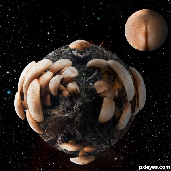 Mushroom planet moon