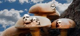 MountMushmore