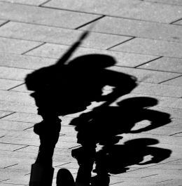 Shadow Soldiers