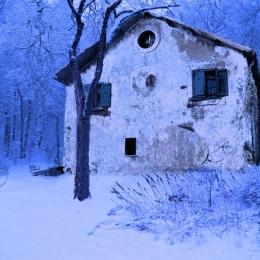 wintertheme