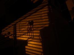 ShadowBlind