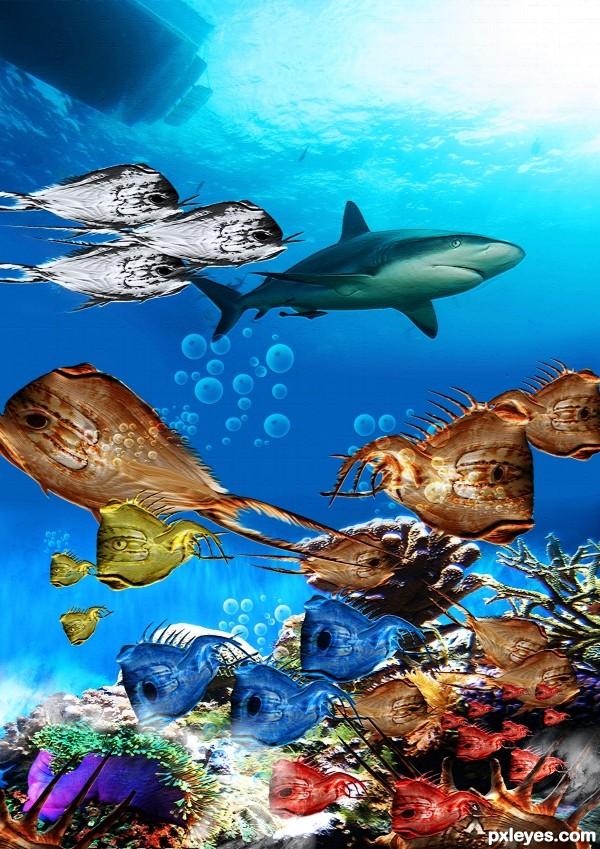 scooba diving