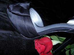 NewShoe