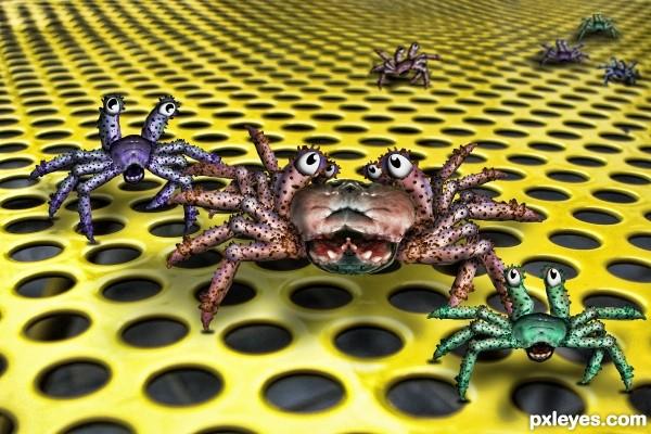 Spliced Crab Twin