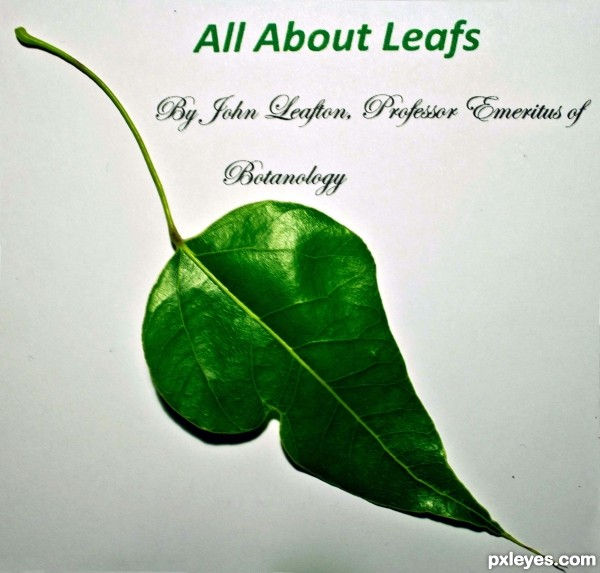 All about leafs